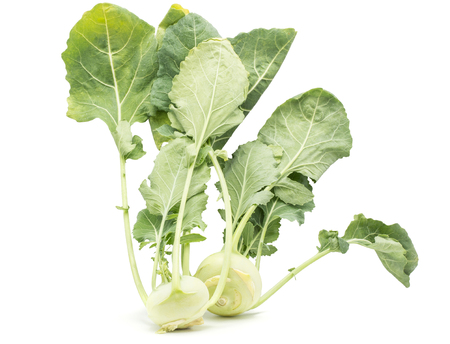 Two kohlrabi (German turnip or turnip cabbage) bulbs with fresh long leaves isolated on white background raw