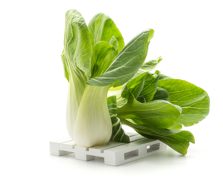 Two bok choy (Pak choi) on a pallet isolated on white background