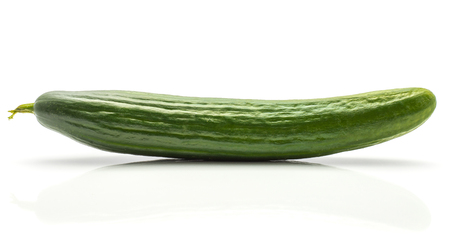 One European cucumber (burpless, seedless, hothouse, gourmet, greenhouse or English) isolated on white background