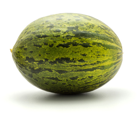One melon Piel de Sapo (Santa Claus Christmas variety) isolated on white background green striped outer rind