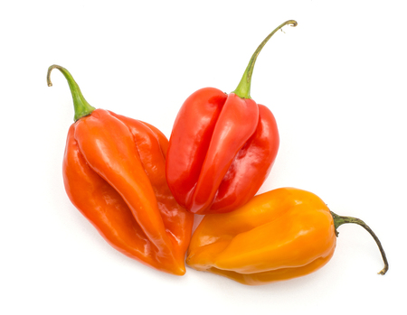Three Habanero chili top view isolated on white background yellow orange red hot peppers  写真素材
