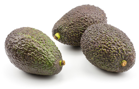 Three green brown avocado isolated on white background ripe alligator pears  Stock Photo