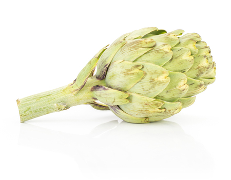 Fresh globe artichoke isolated on white background raw one green