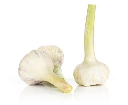 Young garlic with green stems three bulbs isolated on white background  스톡 콘텐츠