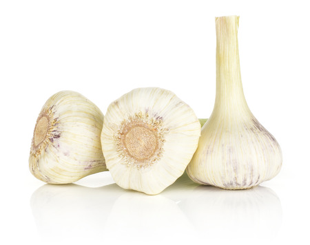 Young garlic three porcelain bulbs isolated on white background  스톡 콘텐츠
