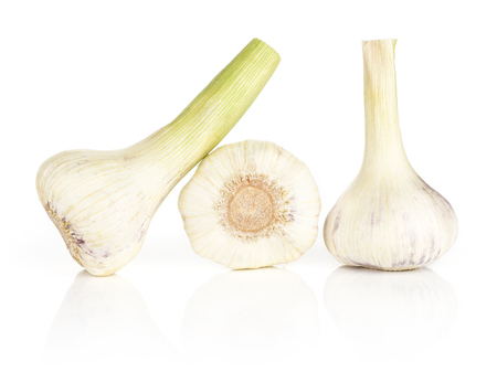 Young garlic three porcelain bulbs with green stems isolated on white background