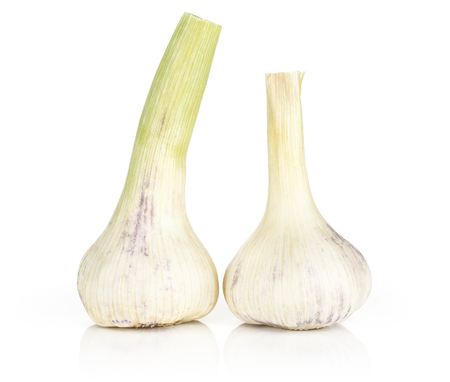 Two young garlic bulbs with green stems isolated on white background