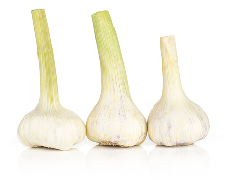 Three young garlic bulbs with green stems isolated on white background in row