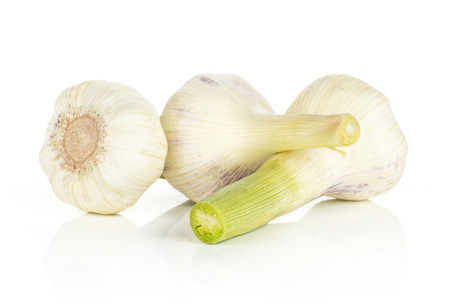 Young garlic with green stems isolated on white background three bulbs