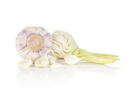 Young garlic two open bulbs with green stem and separated cloves isolated on white background  스톡 콘텐츠
