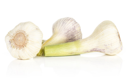 Young garlic three bulbs isolated on white background