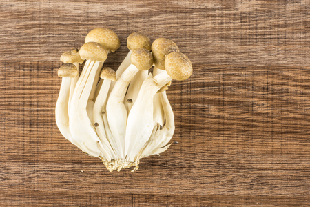 Brown beech mushrooms top view Shimeji isolated on wooden background raw fresh