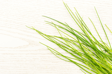 Fresh chives top view isolated on grey wood background grass-like leaves fines herbes