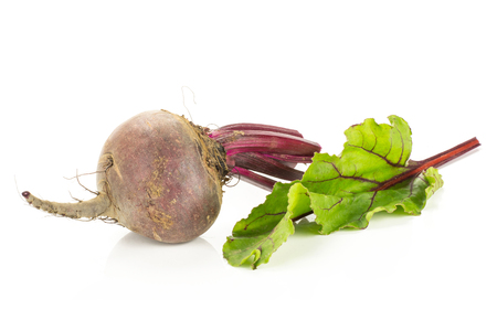 One red beet with cut tops isolated on white background one root bulb and fresh young leaf Banque d'images