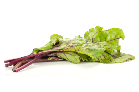 Beet greens bunch isolated on white background young fresh leaves