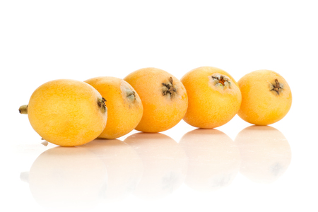 Five fresh orange Japanese loquats in row isolated on white background