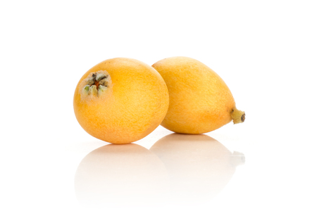 Two fresh Japanese loquats isolated on white background