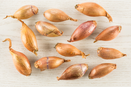 Long golden shallots top view isolated on grey wood background 写真素材