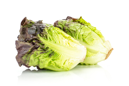 Group of two whole fresh green lettuce red little gem variety isolated on white 免版税图像