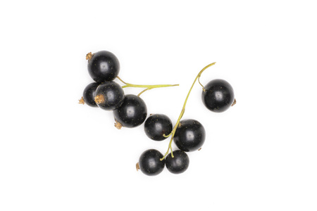 Lot of whole fresh black currant berry ben gairn variety two strigs flatlay isolated on white