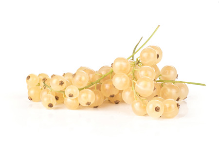Lot of whole fresh white currant berry blanka variety some strigs isolated on white