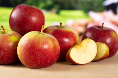 Lot of whole one slice of fresh red apple james grieve variety with country nature in background