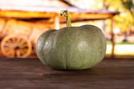 One whole fresh blue grey pumpkin nagy dobosi variety with cart in background