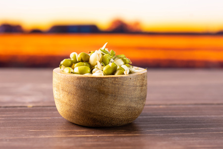 Lot of whole fresh green bean sprouts mungo with wooden bowl with autumn field and sunset in background
