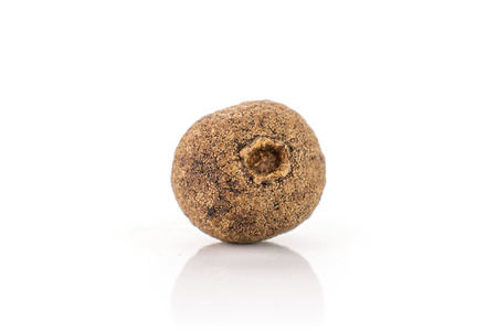 One whole dry brown allspice berries isolated on white background