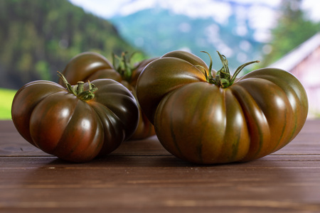 Group of three whole fresh tomato primora with country nature in background
