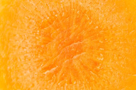 Macro closeup of one slice of fresh orange carrot isolated