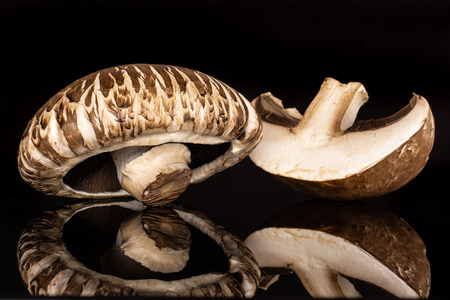 Group of one whole one half of fresh brown mushroom portobello isolated on black glass
