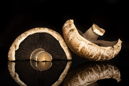 Group of two halves of meaty fresh brown mushroom portobello isolated on black glass