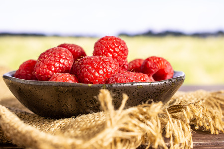 Lot of whole fresh red raspberry on grey ceramic plate on jute cloth with green wheat field