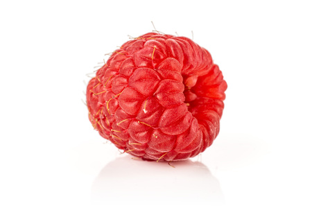 One whole picked fresh red raspberry isolated on white
