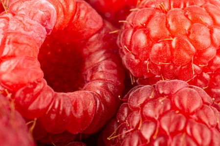 Closeup of lot of whole fresh red raspberry isolated