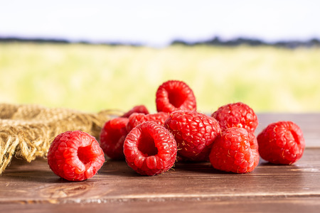 Lot of whole fresh red raspberry on jute cloth with green wheat field