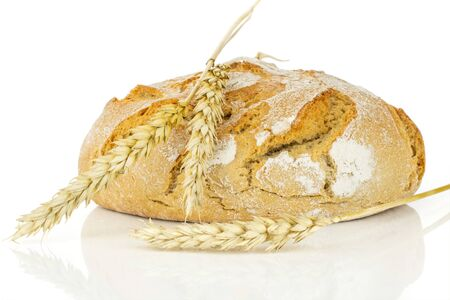 One whole fresh baked rye wheat bread with three golden wheat ears on it isolated on white background