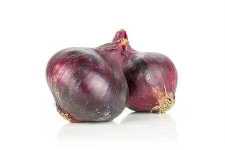 Group of two whole stale red onion isolated on white background