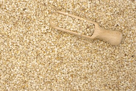 Lot of whole unpeeled sesame seeds with wooden scoop flatlay isolated