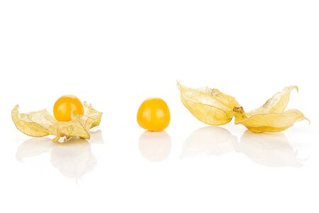 Group of three whole fresh orange physalis without husk in row isolated on white background
