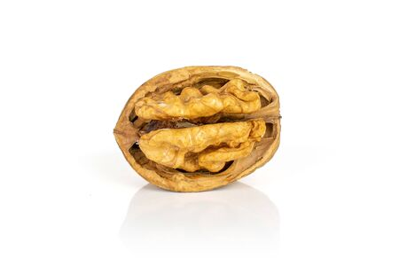 One whole ripe brown walnut with half shell isolated on white background