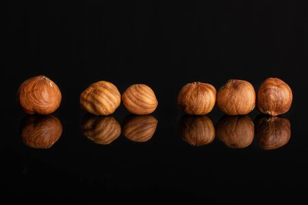 Group of six whole ripe brown hazelnut in row in closeup isolated on black glass