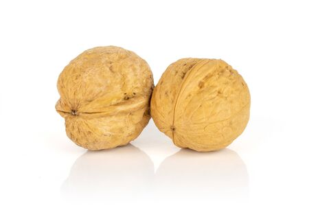 Group of two whole ripe brown walnut isolated on white background