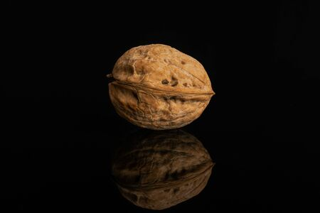 One whole ripe brown walnut in shell isolated on black glass