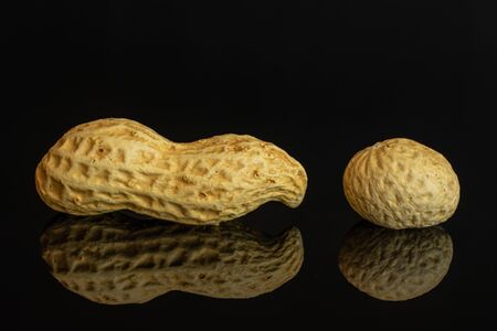 Group of two whole natural yellow peanut one is small isolated on black glass
