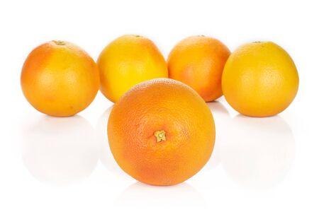 Group of five whole fresh pink grapefruit arranged symmetrically isolated on white background
