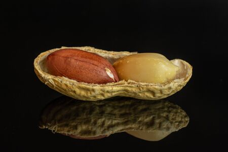 Group of two whole one piece of natural yellow peanut one with skin in closeup isolated on black glass