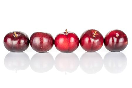 Group of five whole ripe red round plum in row isolated on white