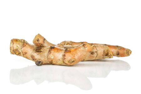 Group of three whole bright turmeric rhizome in row isolated on white background